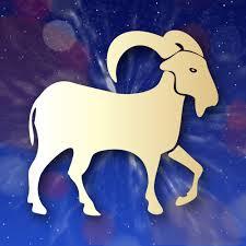 Horoscope amoureux 2014 signe Capricorne